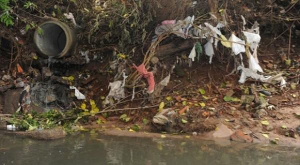 Esgoto tratado produz um  ecossistema saudável